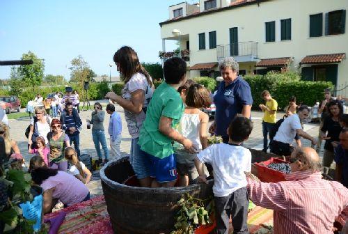 ''Виноградная давка'' - традиционное открытие фестиваля ''Festa del mosto''