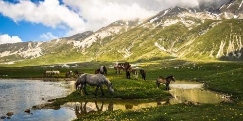 Гран-Сассо вместе с Монти-делла-Лага являются одними из трех национальных парков, формирующих 'зеленые легкие' Европы