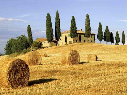 Великолепная Тоскана