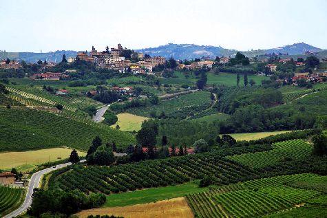 Пьемонт, иногда еще называемый /Тосканой без туристов/, славится своими  виноградиками и живописными холмами!